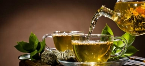 All you need to know about Green Tea